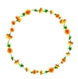 Wektorowy wianek, okrąg rama z akwarelą kwitnie, dandelion fuzzies, ręka rysująca dla poślubiać projekt, kartka z pozdrowieniami Obrazy Royalty Free