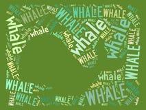 Wektorowy wieloryb na zieleni nasycającej Obrazy Stock