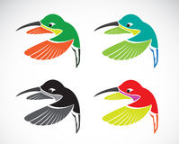 Wektorowy wizerunek hummingbird Obrazy Stock