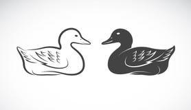 Wektorowy wizerunek kaczka Obrazy Royalty Free