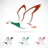 Wektorowy wizerunek latająca dzika kaczka Zdjęcia Stock