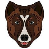 Wektorowy wizerunek psia głowa Fotografia Stock