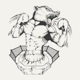 Wektorowy wizerunku bagażnika bokser z gniewną wilk głową Obraz Stock