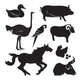 Wektorowy zwierzęta gospodarskie set Obrazy Stock