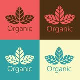 Wektorowych Organicznie liści loga Ekologiczna ilustracja Zdjęcia Stock