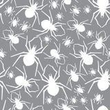 Wektorowych pająków bezszwowy wzór również zwrócić corel ilustracji wektora Fotografia Royalty Free