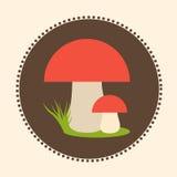 Wektorowych Porcini pieczarek projekta ilustraci EPS 10 Płaski logo Obrazy Stock