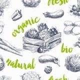 Wektorowych warzyw retro bezszwowy wzór ilustracja wektor