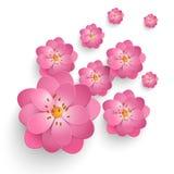 Wektoru papieru Sakura rżnięci kwiaty Kwiecisty wolumetryczny skład Elegancki element dla invitaion kart ilustracji