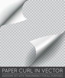 Wektoru papieru strony kędzior z cieniem Odizolowywającym ilustracji