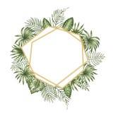 Wektoru ramowy szablon z tropikalnymi liśćmi i złotym łańcuchem z białym miejscem dla teksta royalty ilustracja