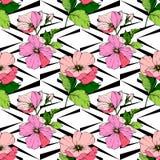 Wektoru Rosa canina Różowy kwiat Grawerująca atrament sztuka Bezszwowy tło wzór Tkanina druku tapetowa tekstura ilustracja wektor