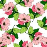 Wektoru Rosa canina Różowy kwiat Grawerująca atrament sztuka Bezszwowy tło wzór Tkanina druku tapetowa tekstura royalty ilustracja
