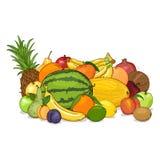 Wektoru stos kreskówek owoc ilustracji