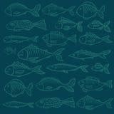 Wektoru wzór z drukiem ryba Zdjęcia Royalty Free