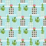 Wektoru wzór z kaktusem Zdjęcia Stock