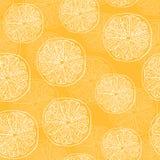 Wektoru wzór z pomarańczami Zdjęcie Stock