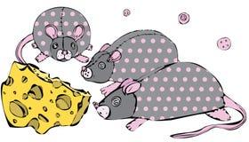 Wektoru 3 zabawkarski szczur z guzikami, różowymi punkty i ser ilustracja wektor