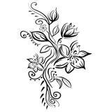 Wektory stylizujący nakreślenie kwiaty odizolowywający Fotografia Stock