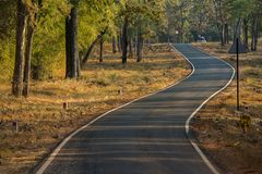 Wel bilt forest road in Tadoba National Park, Chandrapur Maharashtra. 05 Jan 2018 wel bilt forest road in Tadoba National Park, Chandrapur Maharashtra, India stock photography