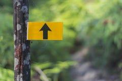 Welche Richtungen gehen Sie? lizenzfreies stockfoto