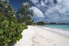 Welches海滩Oistins巴巴多斯印度西部 免版税库存照片
