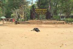 Welcom a Sai Yok National Park imagen de archivo libre de regalías