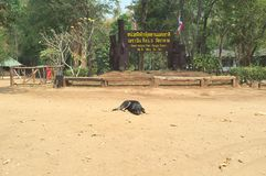 Welcom Sai Yok park narodowy obraz royalty free