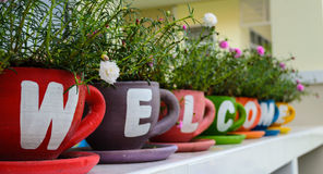 Welcome. Pots containing plants Stock Photo