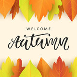 Welcome autumn banner template with bright colorful fall leaves. Seasonal calligraphy. Poster, card, gift tag, label design. Vector illustration Royalty Free Stock Photos