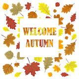 Welcome autumn. Sales banner with  leaves. Leafs in season vector sale design panel.  illustration. White background. Royalty Free Stock Photography