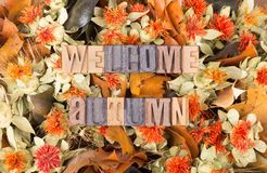 Welcome Autumn Text Stock Photography