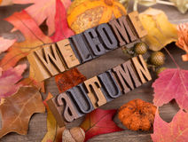 Welcome Autumn Text. Wood letters spelling welcome autumn with a fall decorative background Stock Photography
