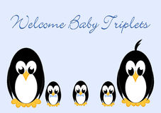 Welcome Baby Penguins - triples Royalty Free Stock Images