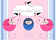 Free Welcome Babys Stock Photos - 19656623
