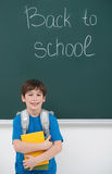 Welcome back to school! Cheerful little schoolboy holding the bo Stock Photo