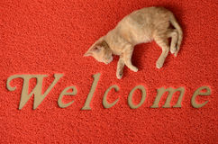 Welcome doormat Stock Photography