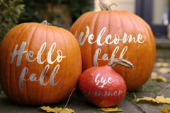 Welcome fall Pumpkins - in front of a house Royalty Free Stock Photos