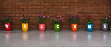 Welcome flowerpot Stock Photos