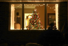 Welcome home Christmas tree Royalty Free Stock Photo