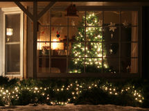 Welcome home Christmas tree Stock Image