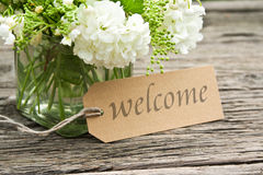 Welcome. Lily of the valley, snowball and label with lettering welcome Stock Image
