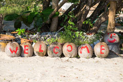 Welcome painted on coconuts Stock Photo