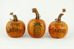 Welcome Pumpkins Stock Images