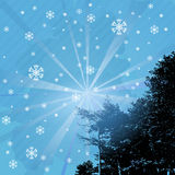Welcome snowflakes Stock Images