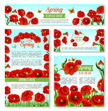 Welcome Spring banner template with flowers. Welcome Spring banner and card template set. Spring flower field with green grass and butterfly greeting poster Stock Images