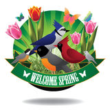 Welcome spring birds and tulips burst icon Royalty Free Stock Photos