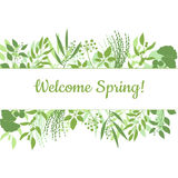 Welcome spring green card design text in floral frame. Vector illustration. Lettering design element Royalty Free Stock Photos