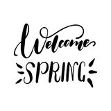 Welcome Spring handwriting lettering design Royalty Free Stock Images