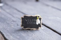 Welcome spring idea, plate with the inscription and snowdrop royalty free stock photos
